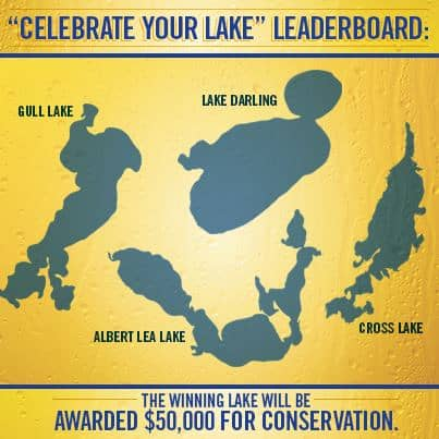 Contest for lake preservation