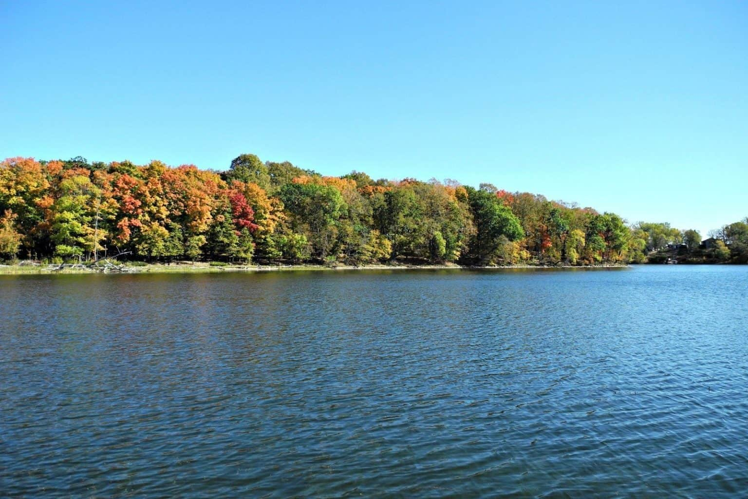 Lake Home Shopping in the Fall – Craig Mische – AlexMN.com